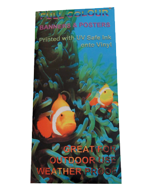 Smooth Curless Banner printing